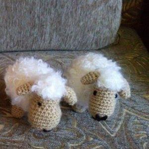 Овцата Шонка