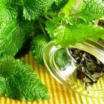 маточина, билки за пречистване на организма