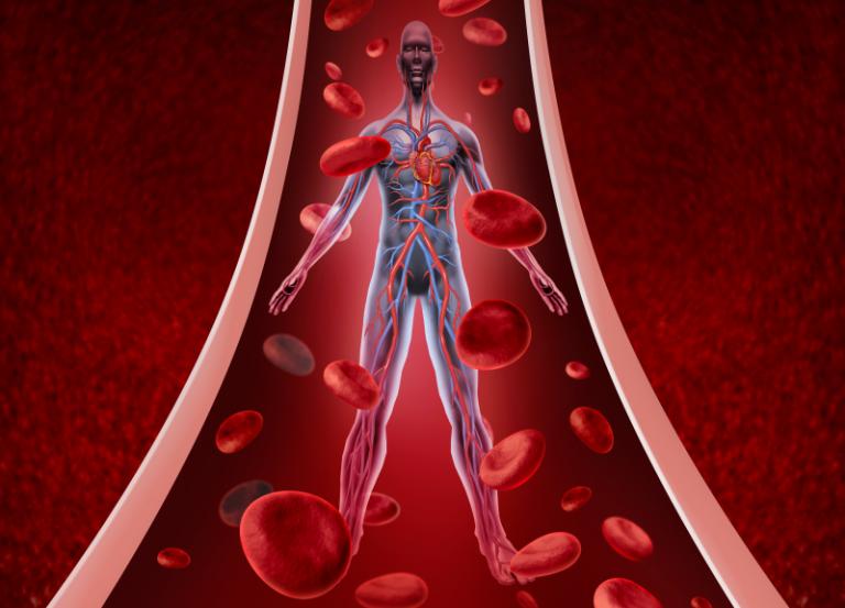 Най-често срещаните причини за повишен холестерол